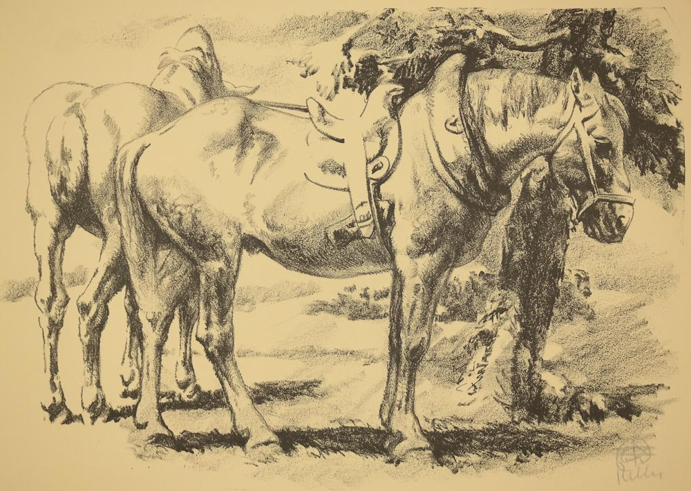 Keller, Cart Horses, image