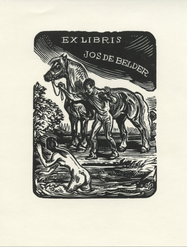 Kotrba /  de belder
