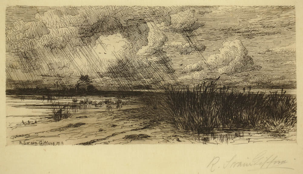 Gifford - summer Storm - image_