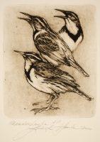 Hanka, Ladislav - Meadowlarks - -15