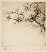 Hanka, Ladislav - Oak Branches - Etching-19