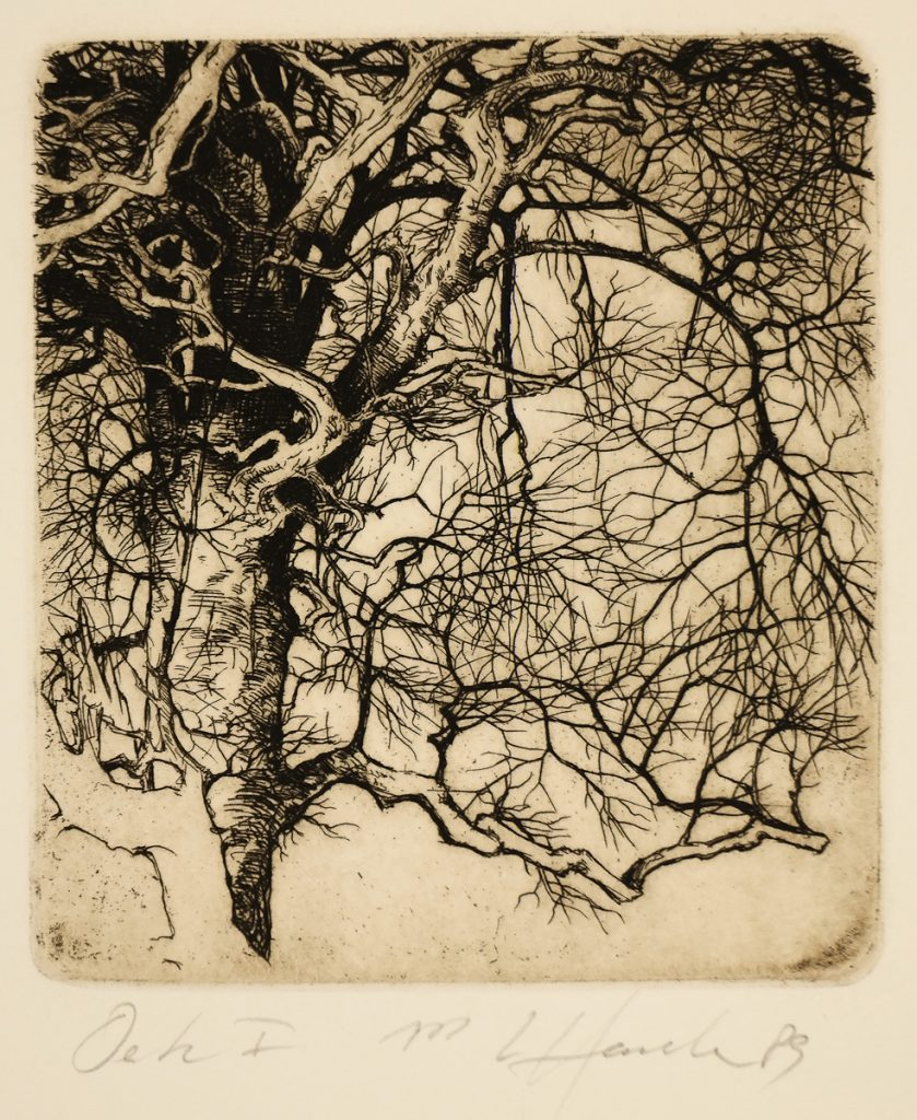 Hanka, Ladislav - Oak I - Etching-31