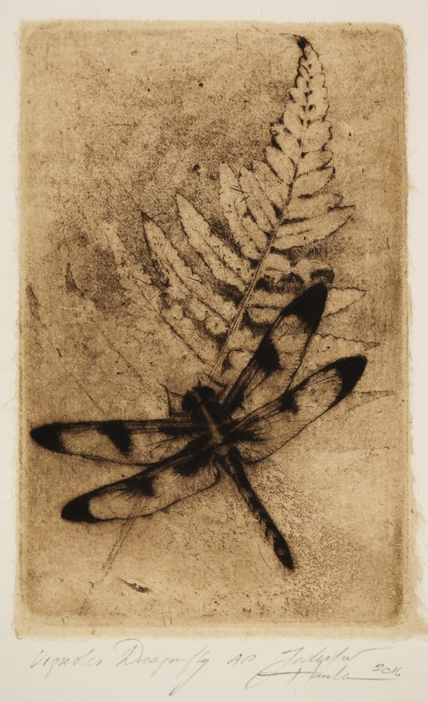 Hanka, Ladislav - Vignoles Dragonfly - -23-3
