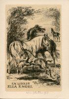 kotrba-emil-colt-three-horses-engel-lithograph-113
