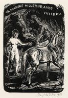 kotrba-emil-nude-horse-hillerbrandt-wood-engraving-104-2