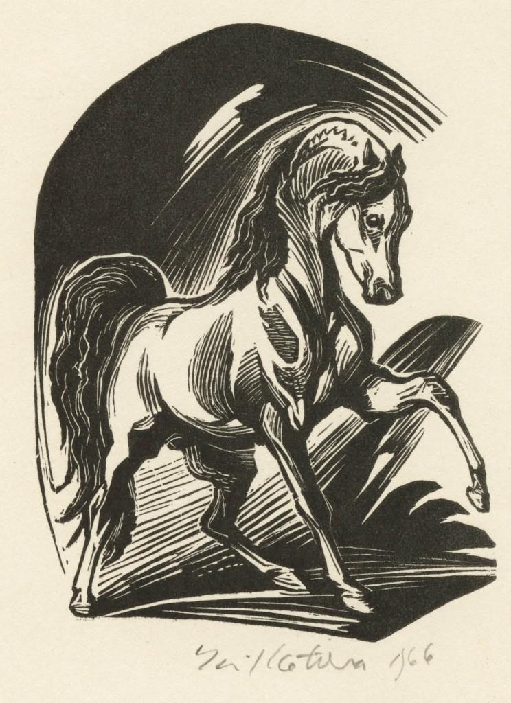 Kotrba - horse, FG, 1966 - image_