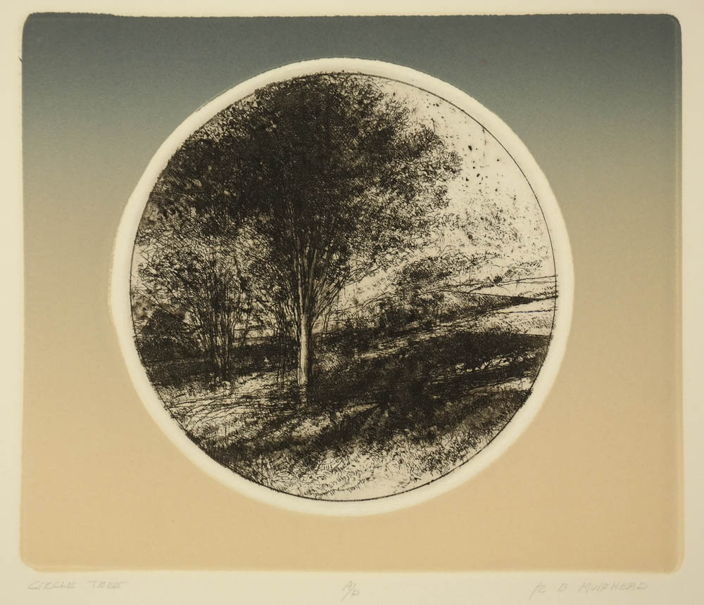 Muirhead, B - Circle Tree - image_