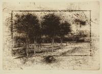 Muirhead, B - Shadow Trees - image