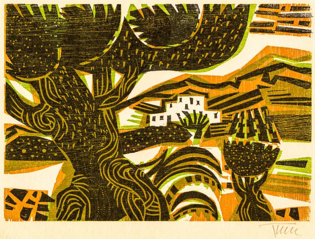 pohl-colombian-landscape-187-2