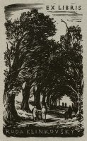 simon-pavel-wooded-path-089-2