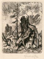 vodrazka-jaroslav-etching-stump-sun-165-2