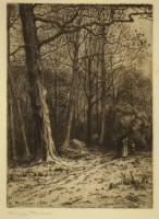 farrer - woods in winter - image