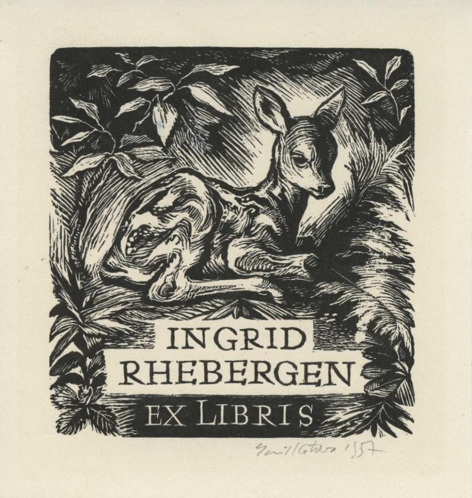kotrba - fawn, rhebergen, 1957 - wd eng
