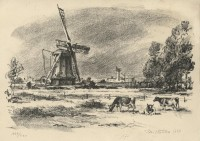 kotrba - windmill, cows